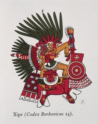 CodexBorbonicusXipe